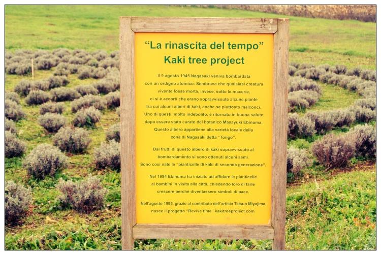 I Giardini di Pomona - La rinascita del Tempo