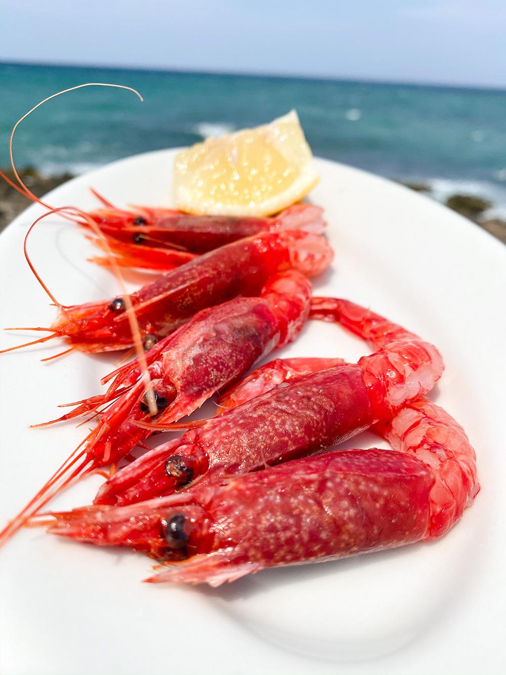 Dove mangiare in Puglia | foodtrip in salento