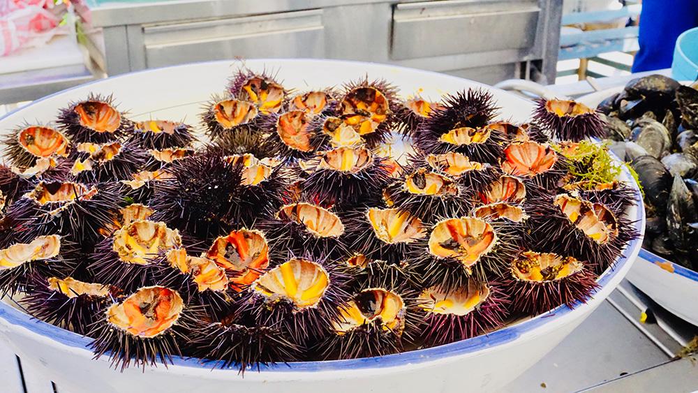 Dove mangiare in Puglia |